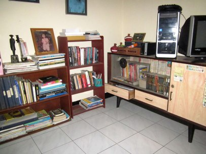 my new mini library